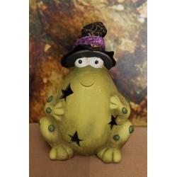 Grenouille chapeau de sorciére